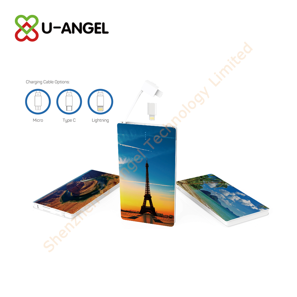 low price fashionable universal portable power bank for promotion gift with customized logo - USBAngel.com - Custom Power Banks, USB flash drives, Bluetooth and more products - A Verified CN Gold Supplier on Alibaba.com